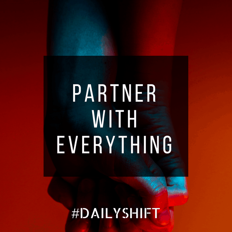 Daily Shift - Partner