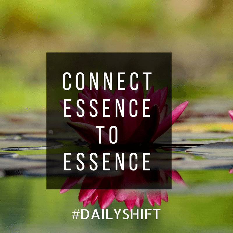Daily Shift - Essence to Essence